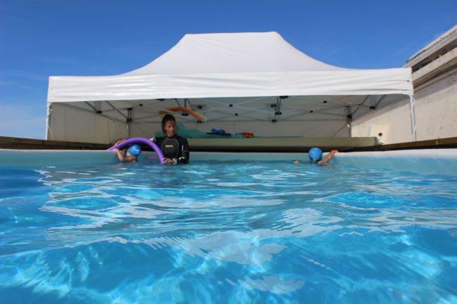 club des pingouins la baule piscine
